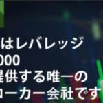 海外FX業者のレバレッジ